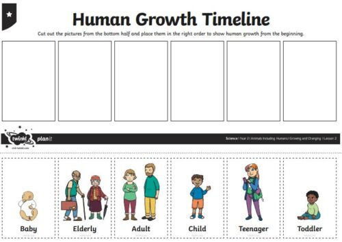 Sequencing life cycle pictures